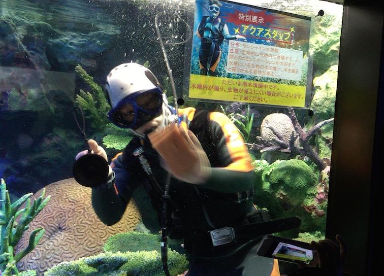 サンシャイン水族館スタッフ水槽掃除