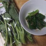 のらぼう菜17年