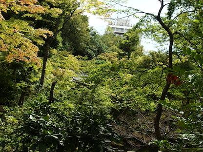 根津美術館の庭園2