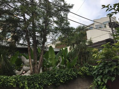 岡本太郎記念館の庭の木々