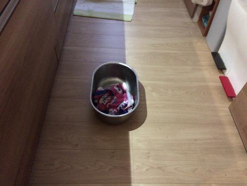 床に洗い桶